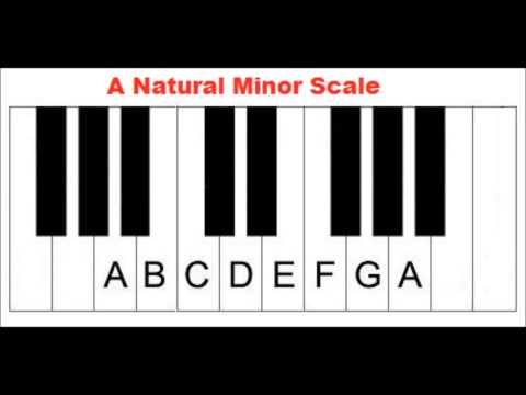 The Key of A Minor - Am Scale - Primary Chords - Piano Lesson