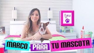Video DIY ¡¡Decora tu cuarto con tus mascotas!! 🐱🐶 Nanny by Nosotras download MP3, 3GP, MP4, WEBM, AVI, FLV September 2017