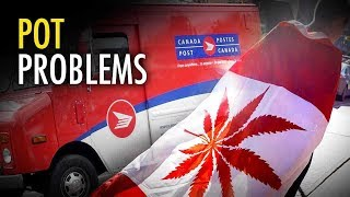 How to lose money selling drugs: A lesson from Canada | Sheila Gunn Reid