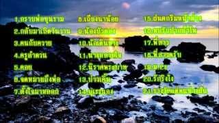 เพลงโฟล์คซอง 2