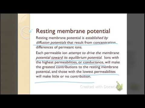 Resting membrane potential and Action potential part 1