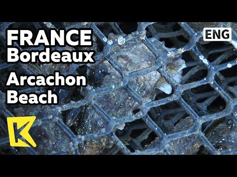 【K】France Travel-Bordeaux[프랑스 여행-보르도]세계 최고 굴 양식지, 아르카숑 해안/Arcachon Beach/Oyster/Cruise Tour/Marine