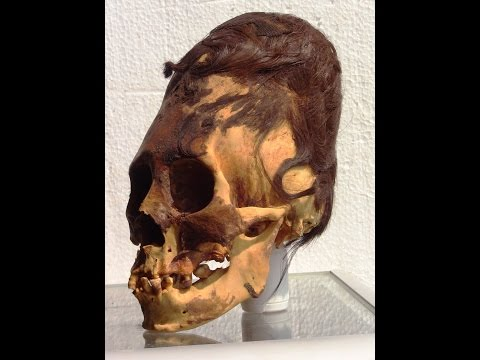 DNA Of Paracas Elongated Skulls Of Peru: August 2016