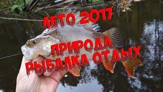 ЛУЧШИЕ МОМЕНТЫ ЛЕТА/ЛЕТО 2017/ РЫБАЛКА ПРИРОДА/ КРАСИВЫЕ ФОТО и ВИДЕО
