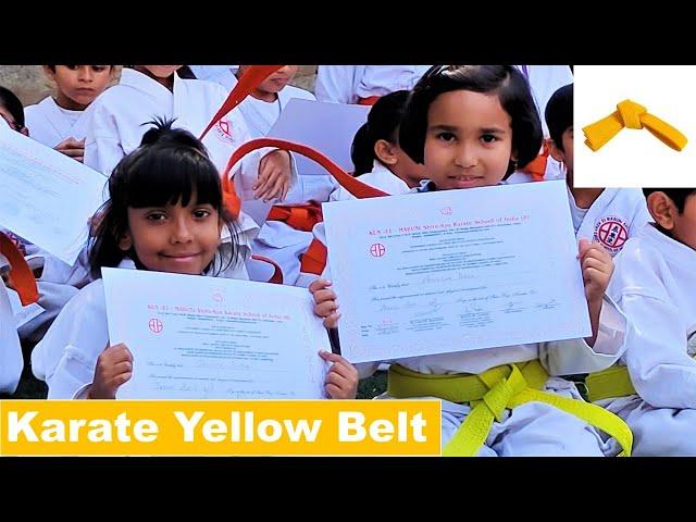 Karate yellow belt exam | Karate Test: Going Yellow Belt | Certificate Distribution  | LearnWithPari