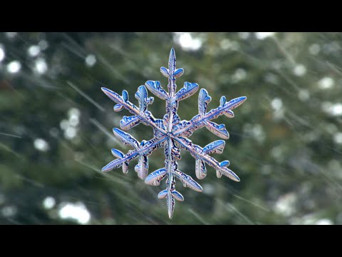 Download Youtube: Snowflakes photographed by new high-speed camera