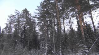 Зимние приколы рыбалка охота. Тропа через Енисей 2014 год 2 февраля. Рыбалка ловля хариуса(В видео --- 1. Юмор - как мы пытаемся залезать на пьедестал - это льдина которую поставил река Енисей в перпенди..., 2014-02-02T14:26:02.000Z)