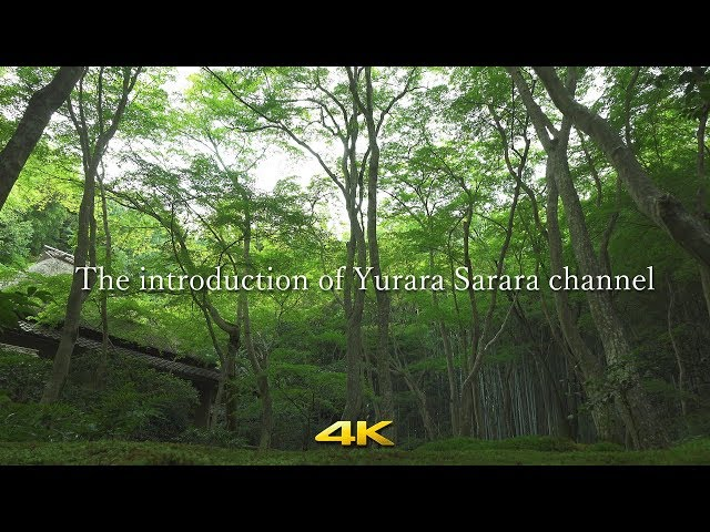 [4K] The Introduction of Yurara Sarara channel.
