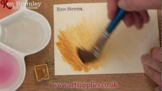Winsor & Newton Cotman paint Raw Sienna 552