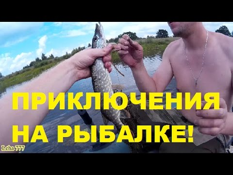 видео однажды на рыбалке