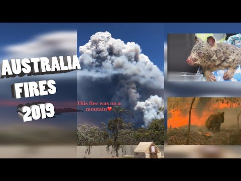 Dramatic Videos From Massive Fires In Australia 2019 L  Admiral Chanel