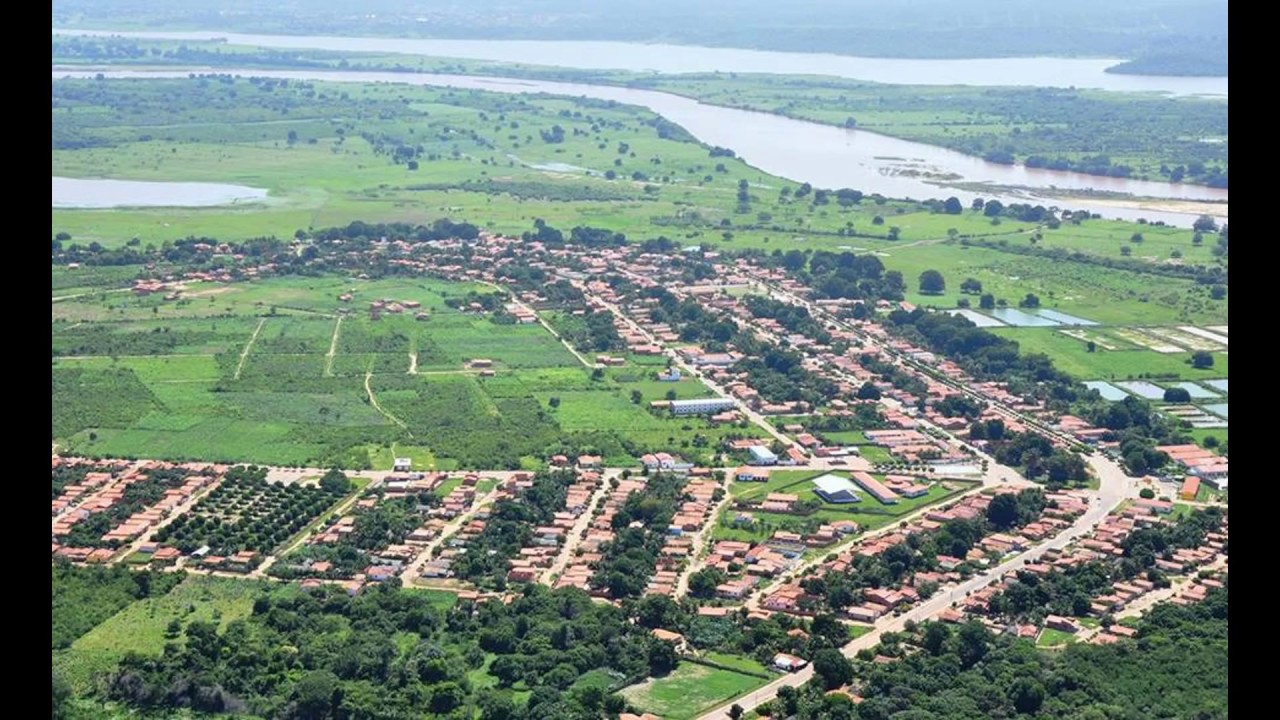 Madeiro Piauí fonte: i.ytimg.com