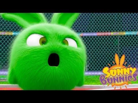 Sunny Bunnies BUNNY OLYMPICS | Cartoons For Children | Funny Cartoons For Children
