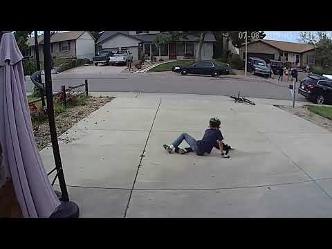 Boy Approaches One-Eye Cat, Doesn't Realize Camera Is Recording