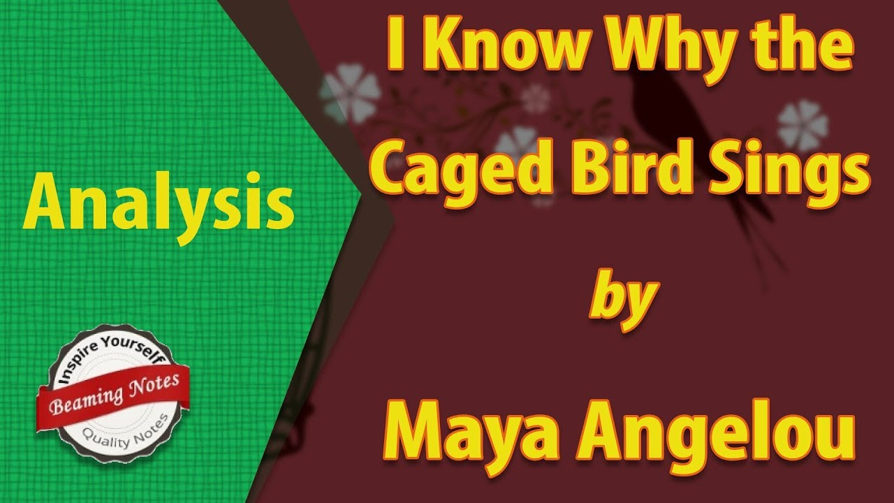 an analysis of the theme of prejudice in i know why the caged bird sings by maya angelou Caged bird sings written by maya angelou  i know why the caged bird sings is a versatile text which can be  i know caged bird sings random house llc random.