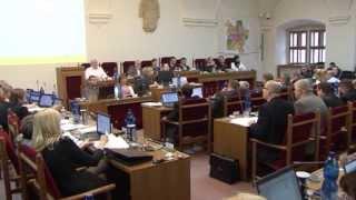 Plzeň v kostce (17.2.-23.2.2014)
