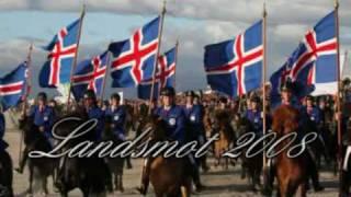Landsmot Hella 2008