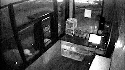 Hip Hop Fish and Chicken Burglary Suspects Sought