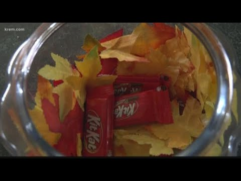 Pet Central - Be sure your pets do not eat Halloween Candy...or candy wrappers