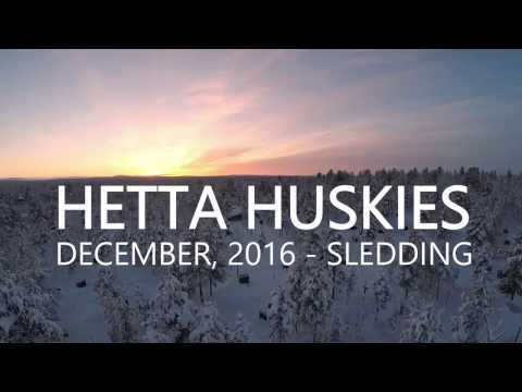 Hetta Huskies December 2016 Sledding