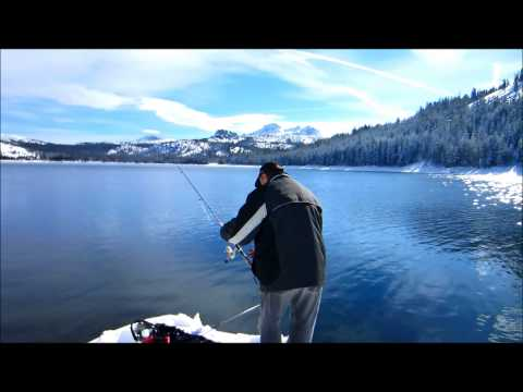 Caples Lake Black Wooley Trout Fishing
