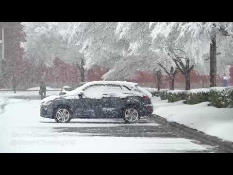 Durham, NC Very Heavy Snow Falling - 1/17/2018