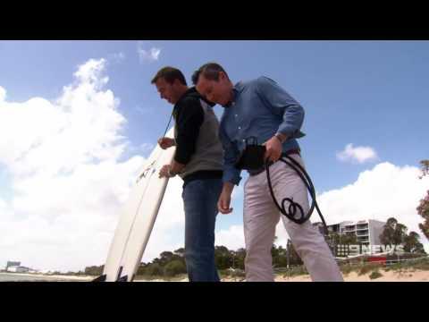Shark Nets | 9 News Perth