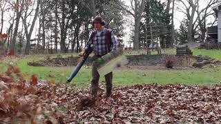 John Deere Z540R mower and Stihl BR-600 backpack leaf blower - Final Fall yard clean up