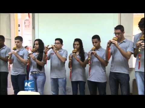 Brazilian students fascinated with Chinese language, culture: China Factors Special, Part III