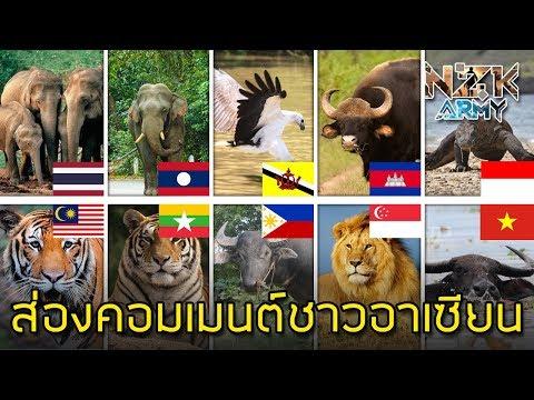 ส่องคอมเมนต์ชาวอาเซียน-เกี่ยวกับสัตว์ประจำชาติของแต่ละประเทศในอาเซียน