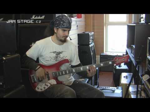 SCHECTER Stargazer 4 Bass