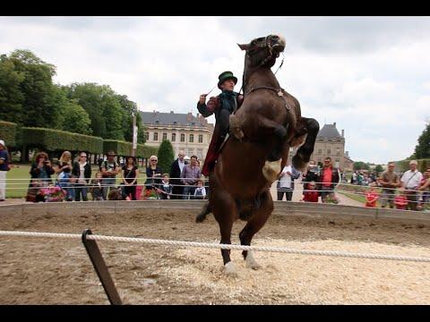 rencontres equestres luneville 2015
