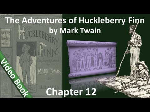 Chapter 12 - The Adventures of Huckleberry Finn by Mark Twain - Better Let Blame Well Alone