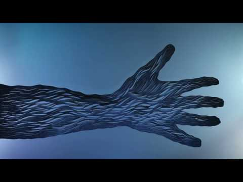 Explosions In The Sky - The Ecstatics (Official Video)