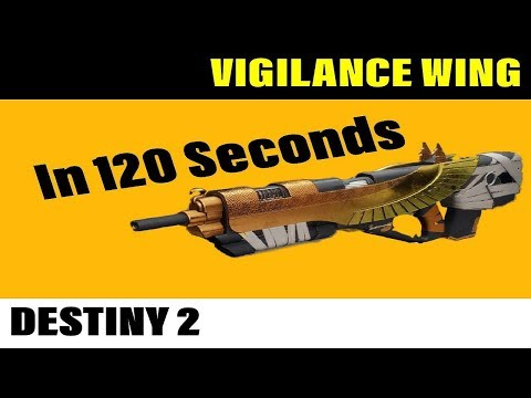 Vigilance Wing 120 Sec Review Destiny 2 Exotic Pulse Rifle