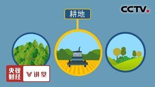 《央视财经V讲堂》 20190619 稳定的土地承包制度为啥很重要?  CCTV财经