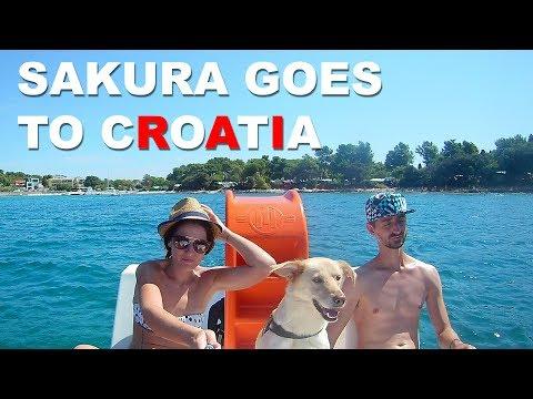 Sakura goes to Croatia