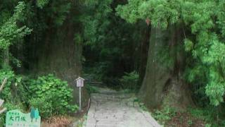 Japan, Kami: The Gods of Shinto