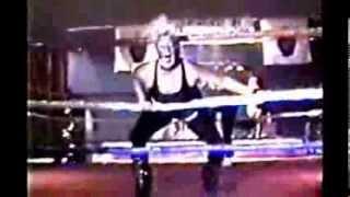 Women Warriors of Wrestling!