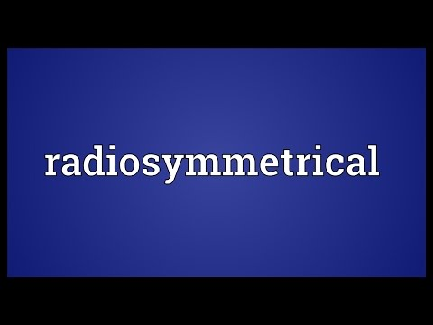 Header of radiosymmetrical