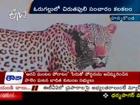 Tiger Fear Shivering Warangal People