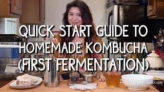 Quick Start Guide to Homemade Kombucha (First Fermentation)