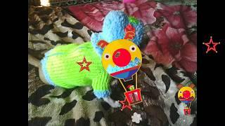 Фото. Собака. Чихуахуа в вязаной кофте / Chihuahua in a knitted sweater