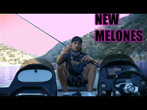 NEW MELONES - WHERE & WHEN TO FISH FT RYAN COOK