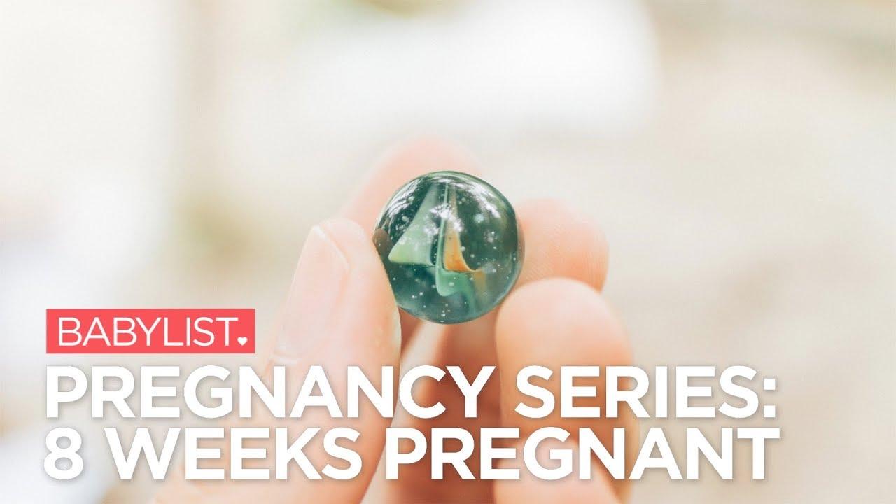 8 Weeks Pregnant - Symptoms, Baby Development, Tips - Babylist