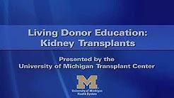 hqdefault - Hla Test For Kidney Transplant