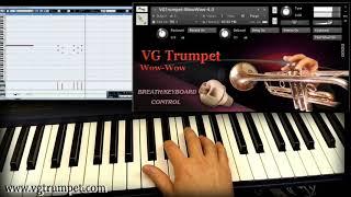 Wow-wow Trumpet sound library for NI Kontakt 5 Wav, vst