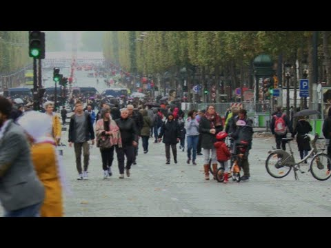 Paris experiments with 'car-free day' across historic centre