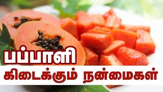 Health Benefits of Papaya - Health Tips in Tamil