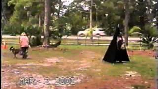 Schutzhund Training - Protection Dog Training Tampa - Orlando - Miami - Ft Myers - Palm Beach